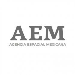 AEM image 2019_2024_small